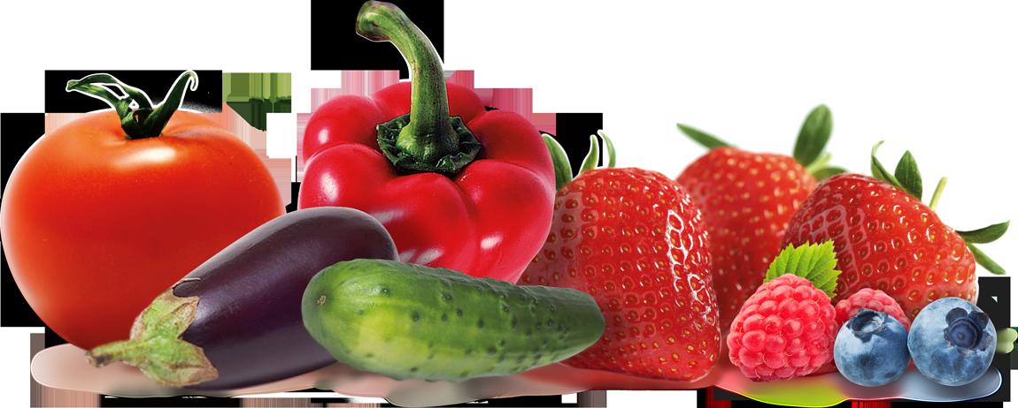 slide_Ptre-ortaggi-frutta